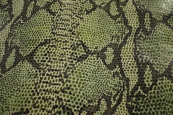 Snake Print Calfskin