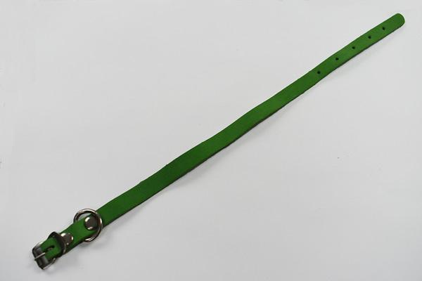 green puppy collar2a
